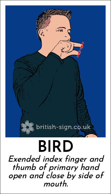Bird: Exended index finger and thumb of primary hand open and close by side of mouth.
