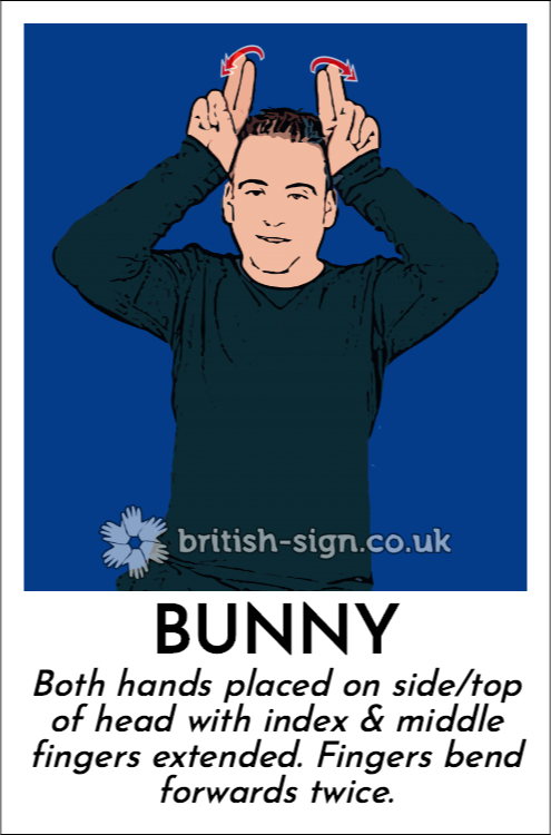 Bunny: Both hands placed on side/top of head with index & middle fingers extended.  Fingers bend forwards twice.