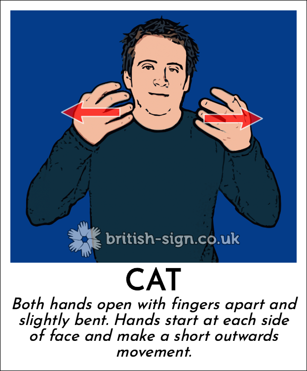 Cat: Both hands open with fingers apart and slightly bent.  Hands start at each side of face and make a short outwards movement.