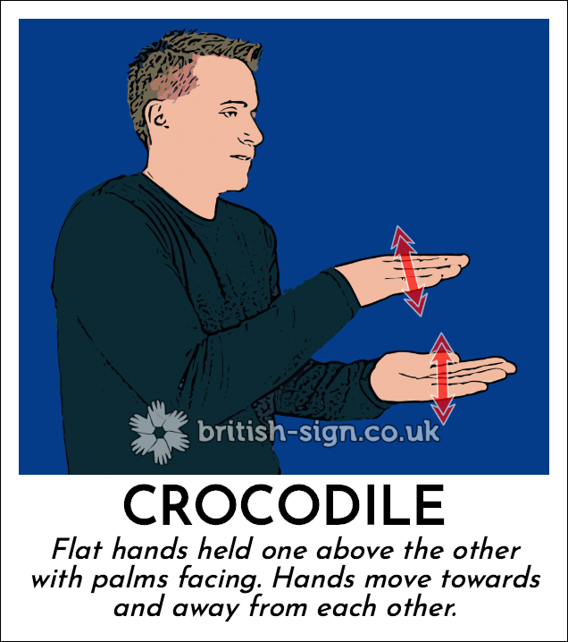 Crocodile: Flat hands held one above the other with palms facing. Hands move towards and away from each other.