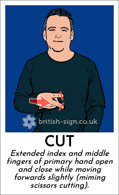 Cut: Extended index and middle fingers of primary hand open and close while moving forwards slightly (miming scissors cutting).