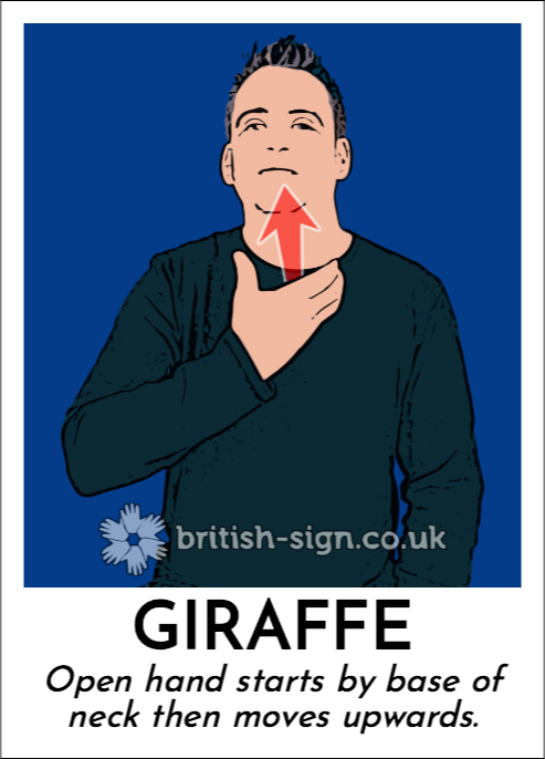 Giraffe: Open hand starts by base of neck then moves upwards.