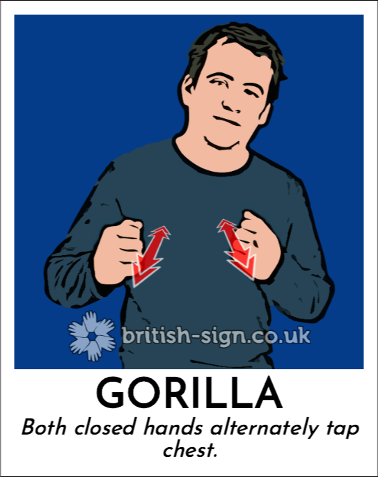 Gorilla: Both closed hands alternately tap chest.