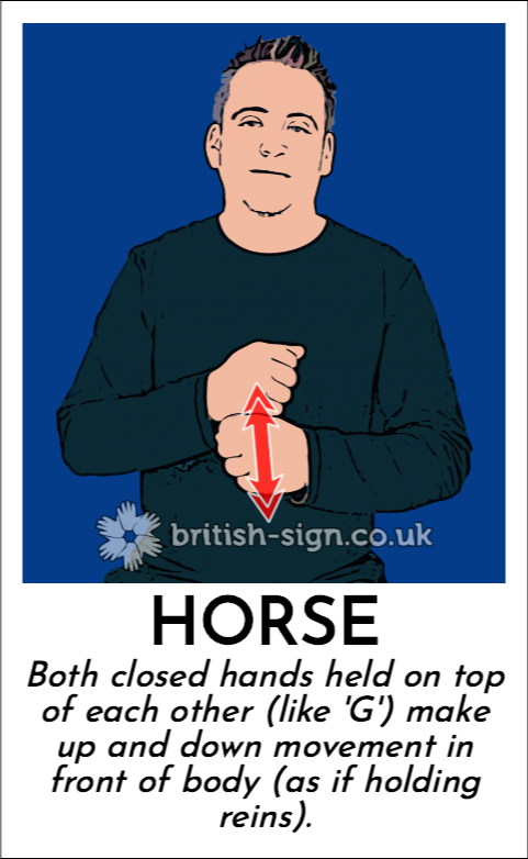 Horse: Both closed hands held on top of each other (like 'G') make up and down movement in front of body (as if holding reins).