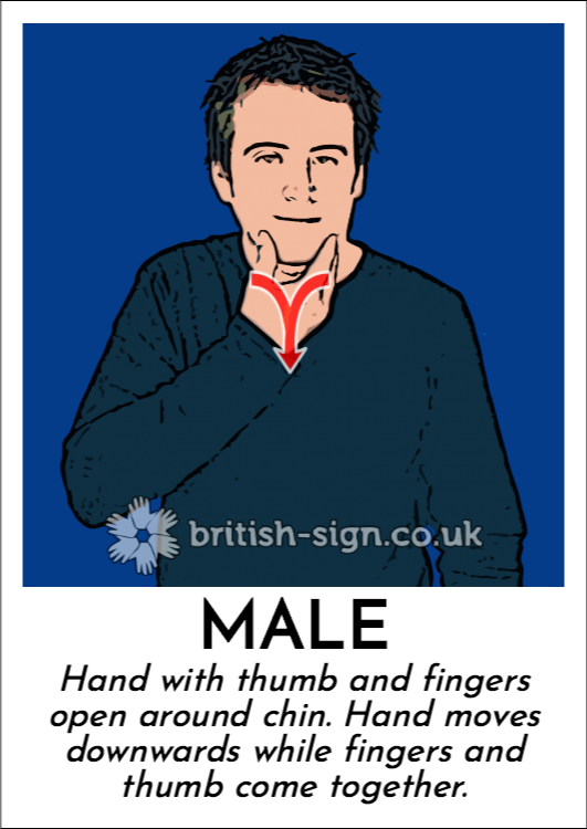 Male: Hand with thumb and fingers open around chin.  Hand moves downwards while fingers and thumb come together.