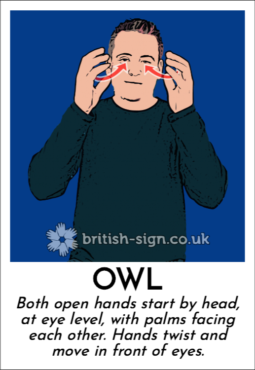 Owl: Both open hands start by head, at eye level, with palms facing each other.  Hands twist and move in front of eyes.