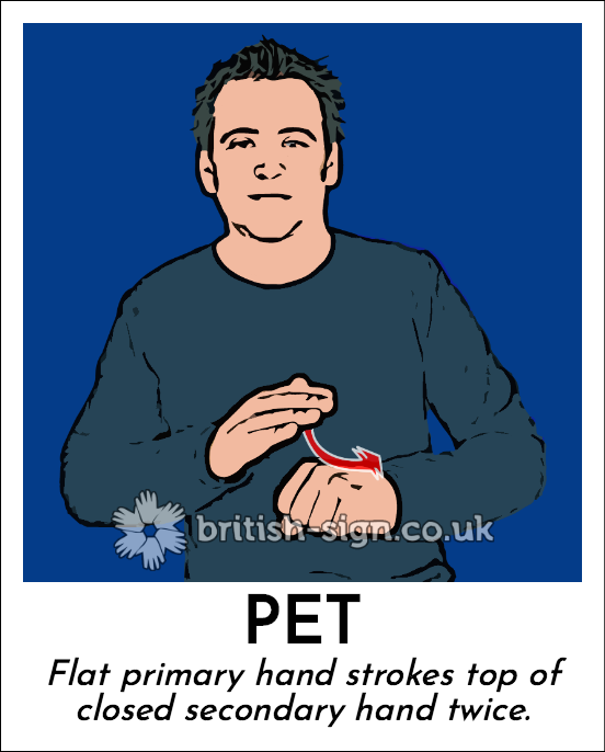 Pet: Flat primary hand strokes top of closed secondary hand twice.