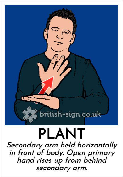 Plant: Secondary arm held horizontally in front of body.  Open primary hand rises up from behind secondary arm.