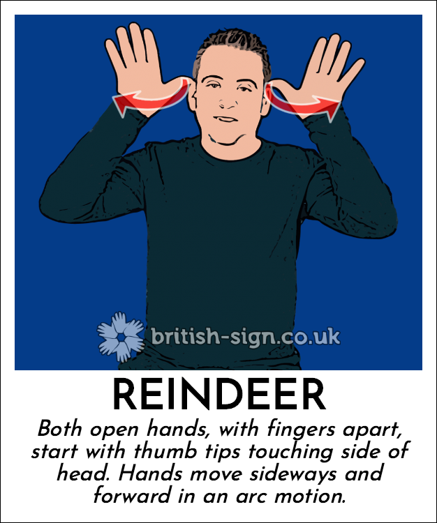 Reindeer: Both open hands, with fingers apart, start with thumb tips touching side of head.  Hands move sideways and forward in an arc motion.