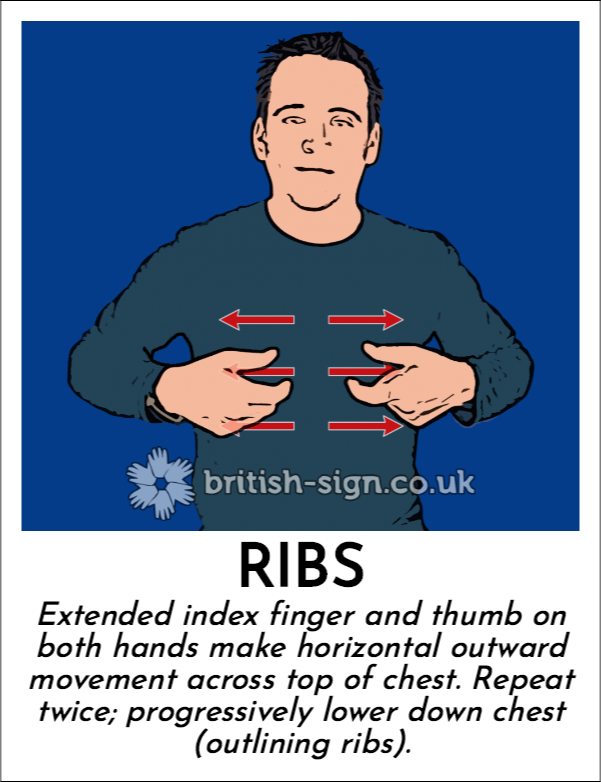 Ribs: Extended index finger and thumb on both hands make horizontal outward movement across top of chest. Repeat twice; progressively lower down chest (outlining ribs).
