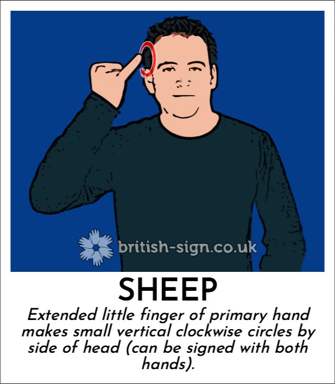 Sheep: Extended little finger of primary hand makes small vertical clockwise circles by side of head (can be signed with both hands).