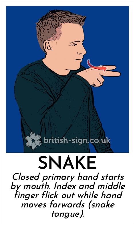 Snake: Closed primary hand starts by mouth. Index and middle finger flick out while hand moves forwards (snake tongue).