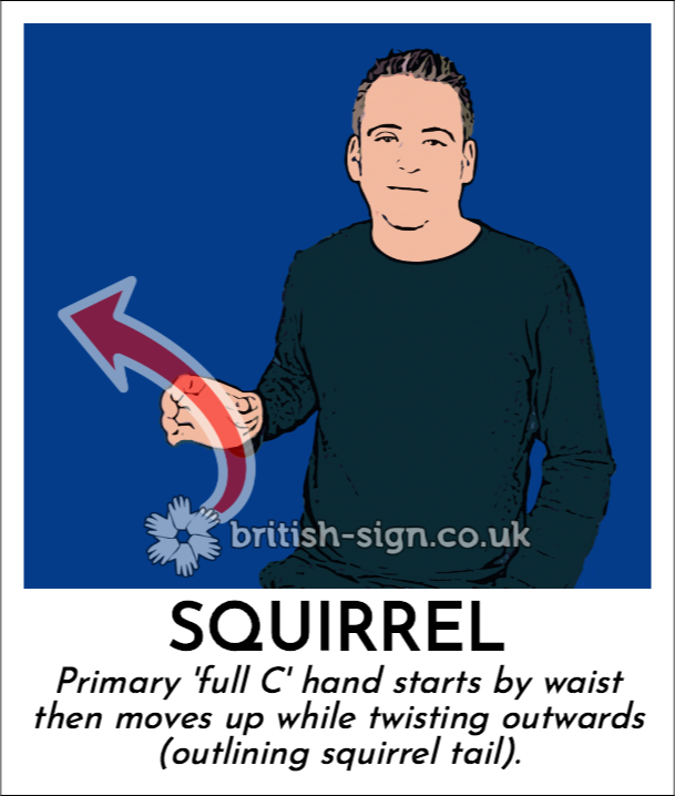 Squirrel: Primary 'full C' hand starts by waist then moves up while twisting outwards (outlining squirrel tail).