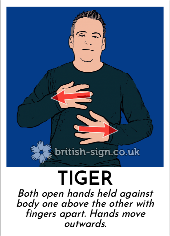 Tiger: Both open hands held against body one above the other with fingers apart.  Hands move outwards.