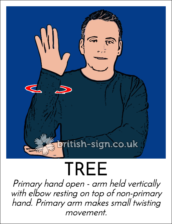 American Sign Language - ASL Lesson 01 - YouTube