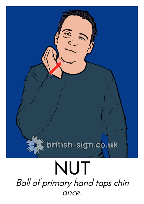 BSL Sign of The Day - 2017/12/15-nut.png