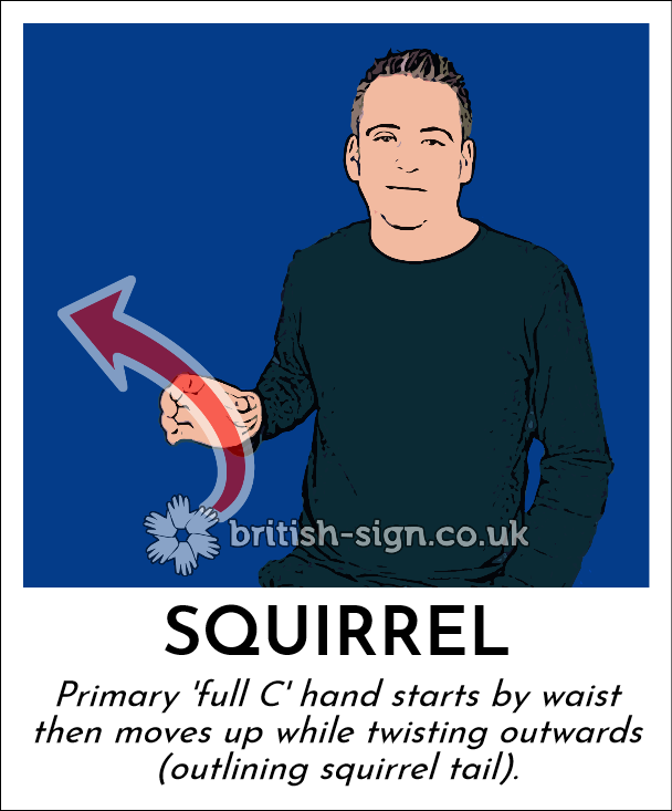 BSL Sign of The Day - 2019/1/21-squirrel.png
