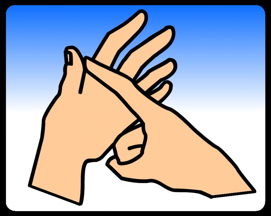 A - British Sign Language (BSL)