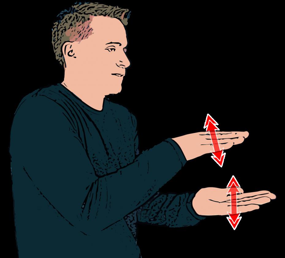 Crocodile - British Sign Language (BSL)